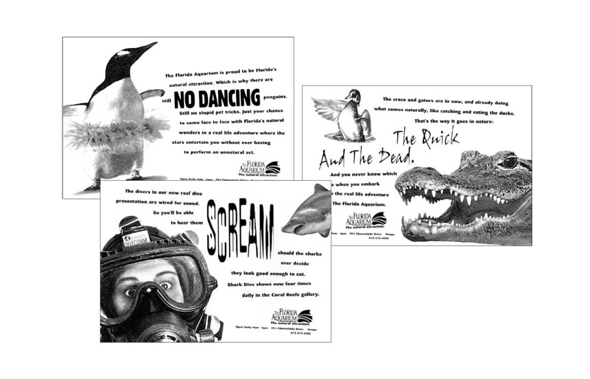 Newspaper ads | The Florida Aquarium