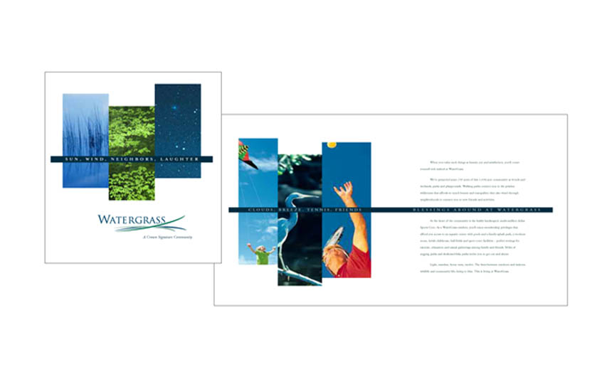 Brochure cover and inside spread | Watergrass